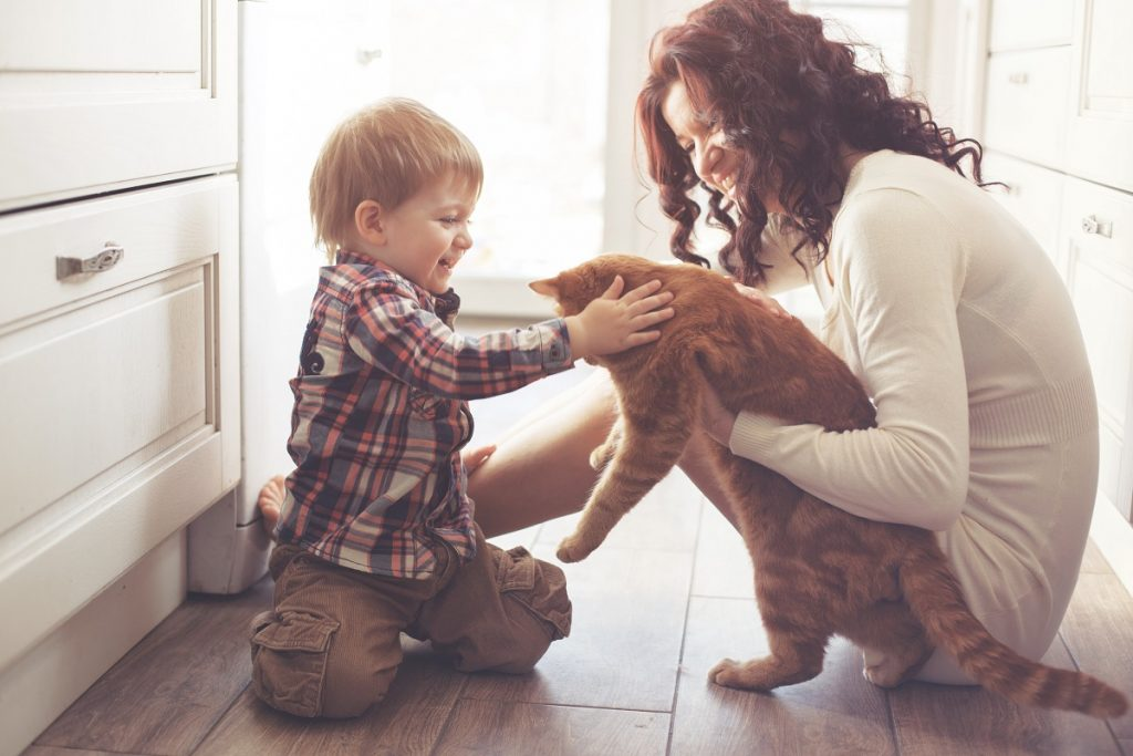 Mother and son playing with the cat