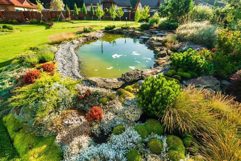 modern garden with landscape