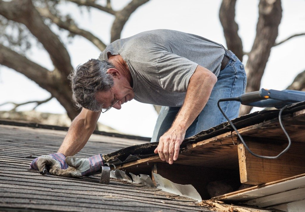 Close up view of man using removing rotten wood from leaky roof