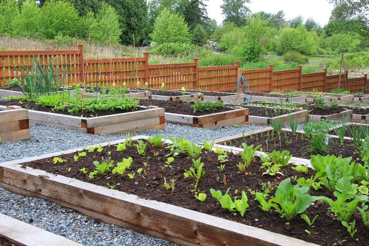 compartmentalized garden